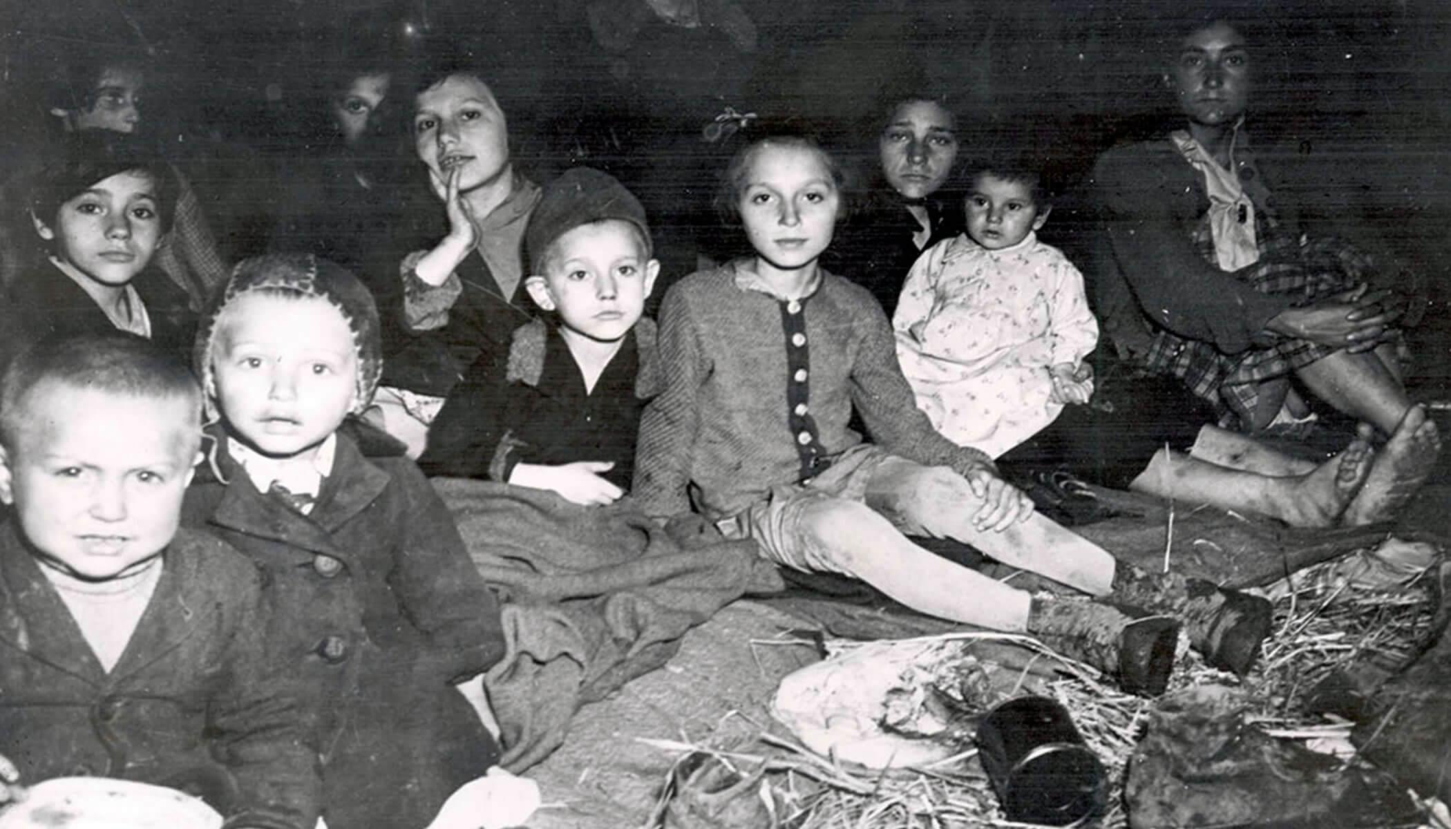 Child Survivors of the Holocaust photo Yad Vashem